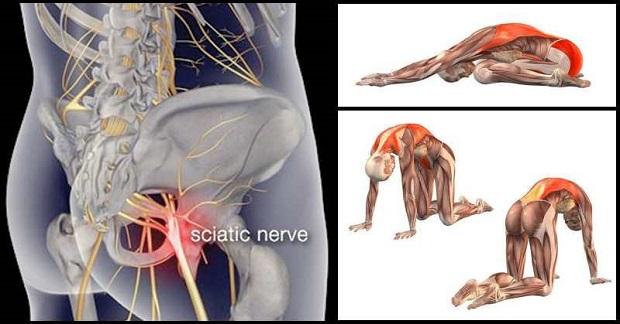 Deformarea artrozei tratamentului articula?iilor ?oldului