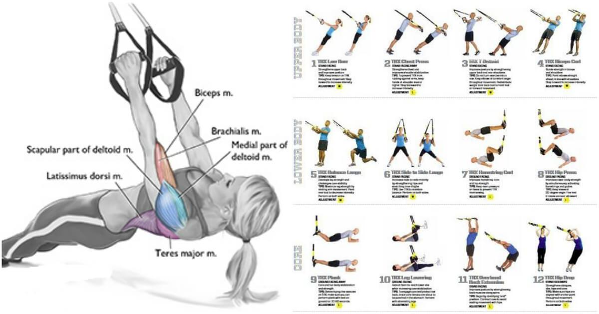 20 de min de antrenament full body la TRX