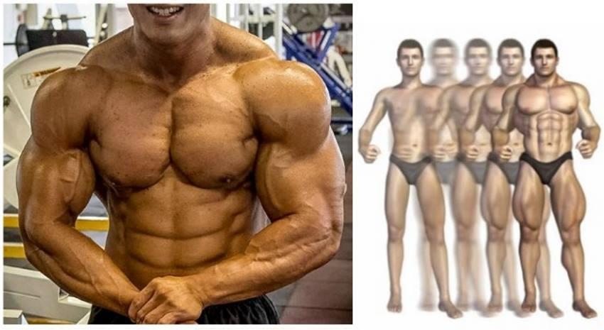 Cum să castigati 5 kg de mușchi în 4 săptămâni?