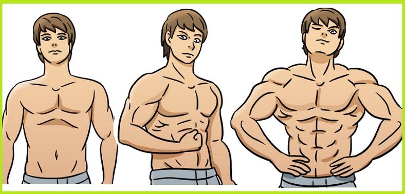 10 moduri de a te defini, construi masa musculara și sa obții rezultate