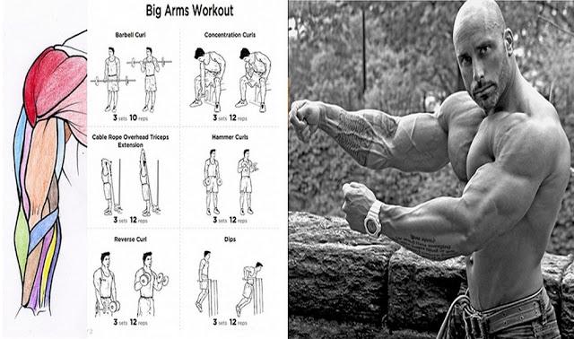 Cele mai bune 6 exerciții pentru brate mai mari și mai puternice