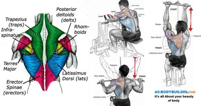 4 modalități de a obține un spate mai mare și mai puternic