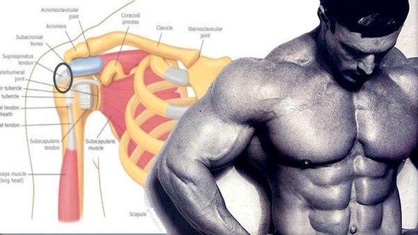 3 exerciții pe care trebuie să le faceți pentru a va dezvolta deltoizii