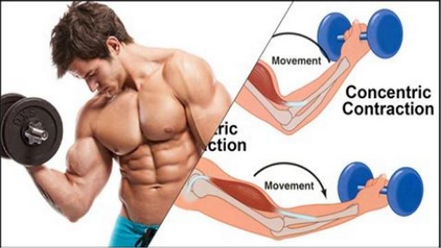 Timp sub tensiune (TUT) Cum să utilizați repetarile negative pentru a construi rapid masa musculara