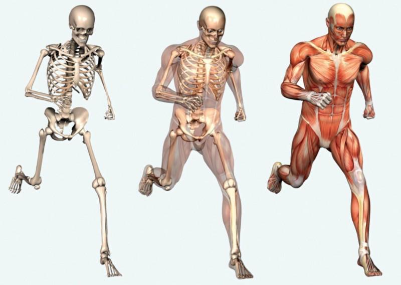Îmbunătățirea sănătății osoase: cele mai bune sfaturi și exerciții de nutriție