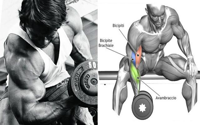 Ucide-ti bicepsul cu aceste 4 exercitii brutale