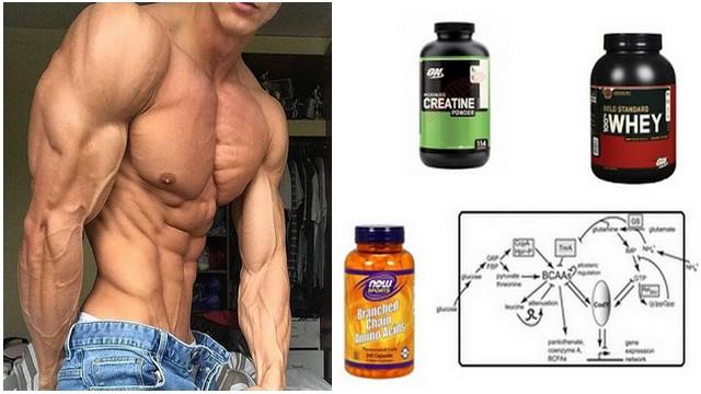 3 Suplimente eficiente pentru a construi masa musculară