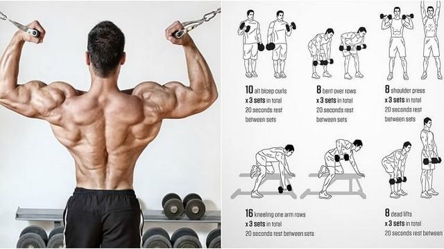 Ziua spatelui și a bicepsului: cea mai bună combinație de antrenament