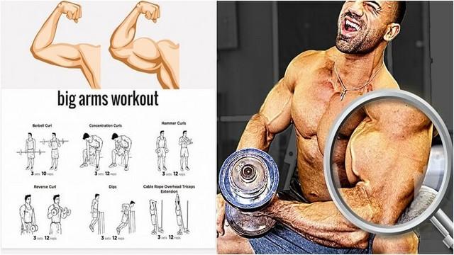 Construiți brate mai mari: Antrenati Bicepsul și Tricepsul de două ori pe săptămână!