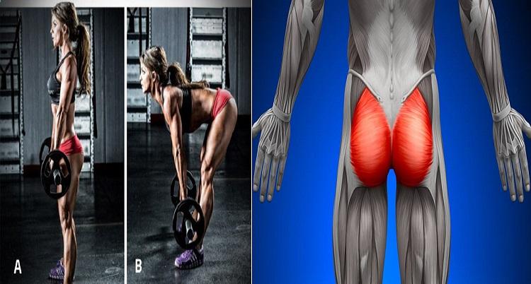 Antrenament pentru fese și picioare: cele mai bune modalități de a construi un posterior perfect