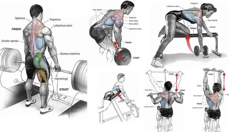 Antrenament complet de spate cu 8 exercitii