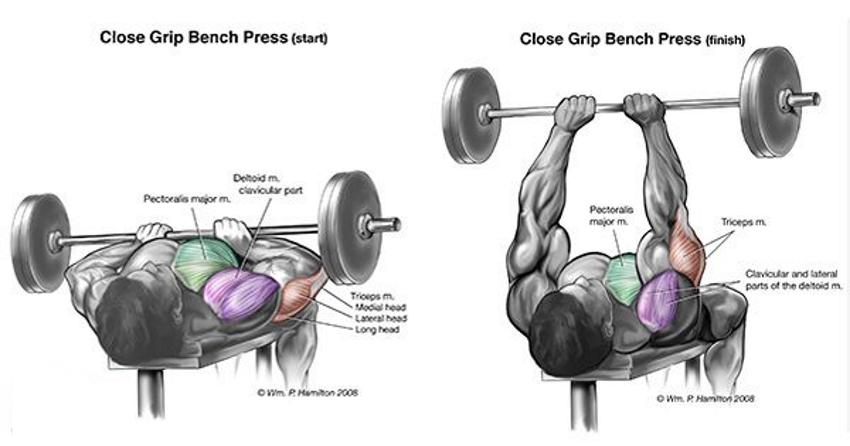 6 exercitii pentru a creste masa musculara in brate