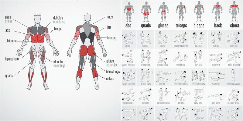 28 de zile de antrenament full body acasa