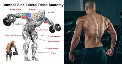 Un exercițiu simplu pentru corpul superior care vă va dezvolta deltoidul posterior