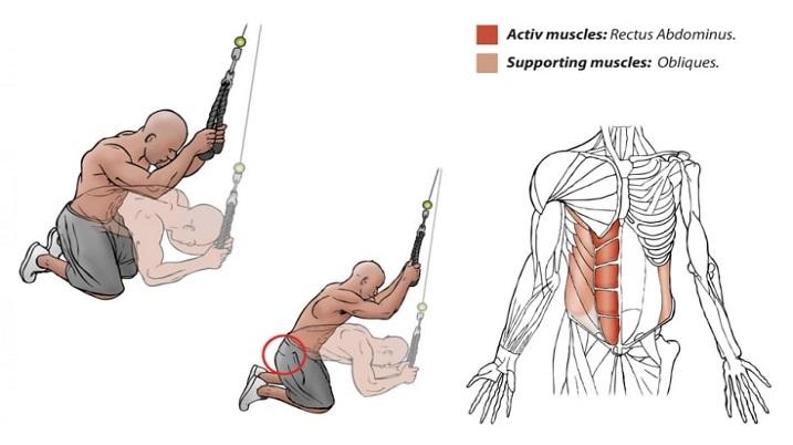 Care este cel mai bun moment pentru a-ți antrena abdomenul?