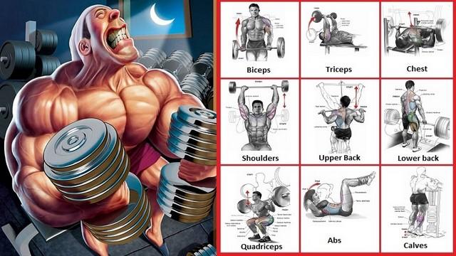 Cum sa ridici greutăți pentru a construi masa musculara - Cum fac culturistii