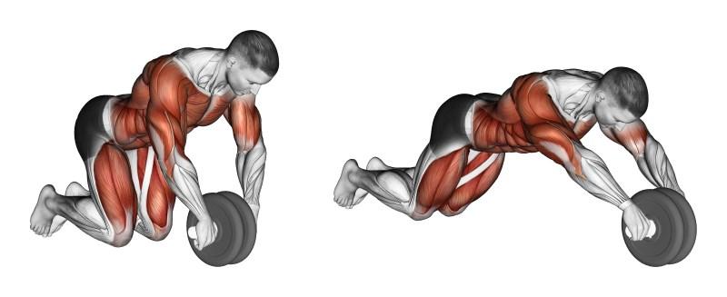 ab rollout pierdere în greutate